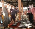 Nurdin dan Arif Borong Ikan Nelayan
