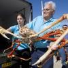 Crabzilla, Kepiting Raksasa Asal Jepang
