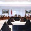 Presiden Jadikan Rempang Galang sebagai Kawasan Ekonomi Khusus