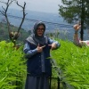Tutut Soeharto Ingin Kembalikan Indonesia Makmur