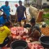 Terperangkap Jaring, Warga Dompak Ramai-ramai Potong Ikan Dugong