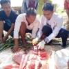 DKPP Bintan Turunkan 4 Dokter Hewan Pantau Hewan Kurban