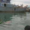 Jatuh ke Laut saat Kelahi dengan ABK, Fendi Ditemukan Meninggal di Sela Kapal