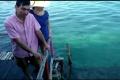 Video Kekecewaan Wisman Akibat Limbah Minyak Hitam di Bintan