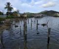 Polisi Tambelan Butuh Tempat Tinggal, Mes yang Lama Ambruk ke Laut