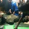 Warga Batam yang Hilang Ditemukan Meninggal di Tengah Dam Tembesi