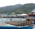 Anambas Kirim Sapi Kurban ke Pinang, Harganya Lumayan