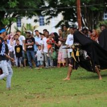 6. Penampilan Paguyuban Reog Suro Menggolo.