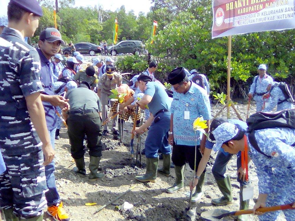 Bela Negara dengan Mangrove