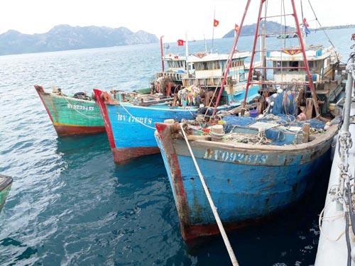Lima Kapal Ikan Vietnam Ditangkap di Laut Natuna