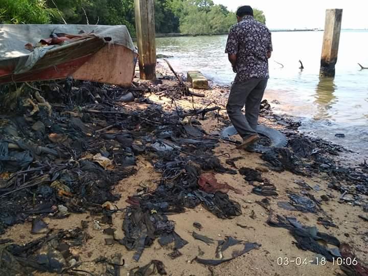 Pantai Bintan Tercemar Limbah Minyak, LSM Alim: Pemerintah Tak Serius